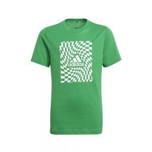 B G T1 Bianco e Verde